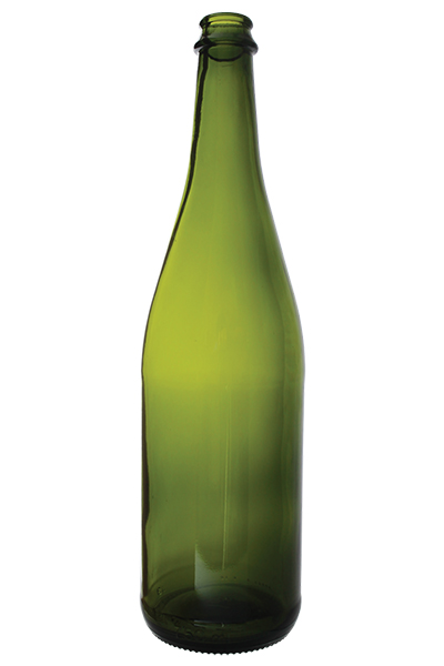 Sparkling Wine/Champagne bottle - WP1383